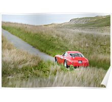 The Three Castles Welsh Trial 2014 - Ferrari 250 GT SWB Poster