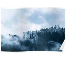 Blue Forest Fog Poster