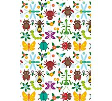 Insects on white Photographic Print