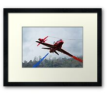 Red Pair  Framed Print