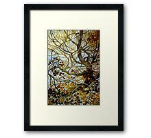 yellow leaves Framed Print