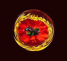 Flower globe in red and yellow by Robert Gipson