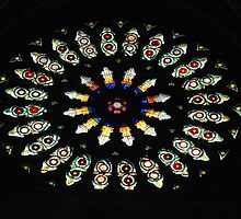 Rose Window at York Minster. by John Dalkin