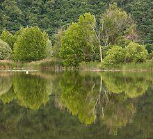 landscape lake by spetenfia