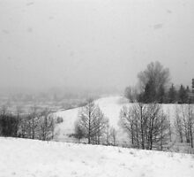 Snowstorm January 2014 by Al Bourassa