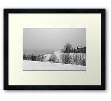 Snowstorm January 2014 Framed Print