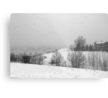 Snowstorm January 2014 Metal Print