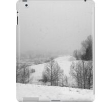 Snowstorm January 2014 iPad Case/Skin
