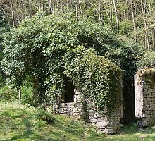 abandoned cottage in the mountain by spetenfia