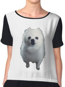 Gabe The Dog - BEST SELLING, VIRAL MEME, FAMOUS DOG Chiffon Top