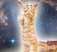 Cats in Space by BobbyCorps