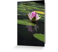 Botanic Garden Water Lily Greeting Card