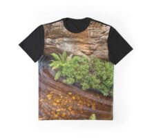 Billiwing Gorge Graphic T-Shirt