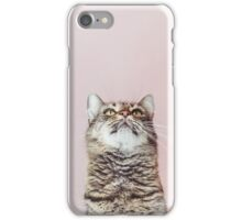 Beautiful cat looking up iPhone Case/Skin