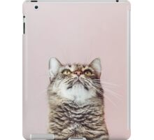 Beautiful cat looking up iPad Case/Skin