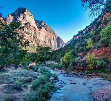 Morning in Zion by vivsworld