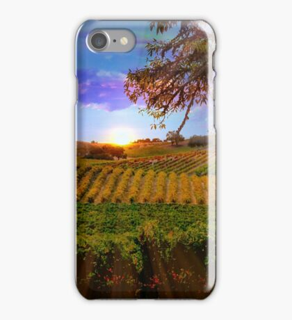 Colorful Fall Vineyard iPhone Case/Skin