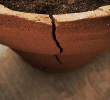 A Crack in the Terra Cotta by dandouna321