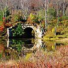 The Bridge by Eileen McVey