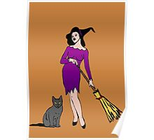 Witch with cat Poster