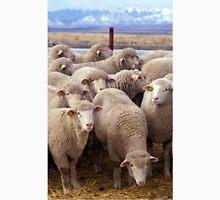 Sheep Herd Unisex T-Shirt
