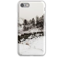Winter In The Coquet Valley iPhone Case/Skin