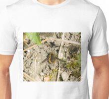 Dark-edged Bee-fly Unisex T-Shirt