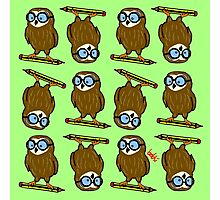 Wise old owl Pattern Photographic Print