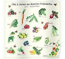 Obst & Gemüse Poster