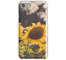 Four Brothers iPhone Case/Skin
