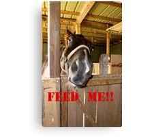 FEED ME!!! Canvas Print