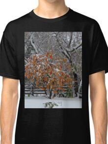 Oct Snowstorm 2016 Classic T-Shirt