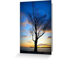 Sunset Spectacular Greeting Card