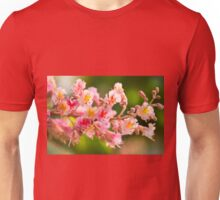 red chestnut tree blossoms Unisex T-Shirt