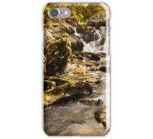 Autumn in a Lake District beck iPhone Case/Skin