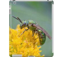 Halictid Bee iPad Case/Skin