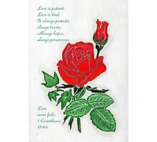 The Love Rose Photographic Print