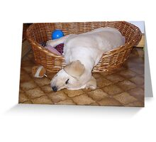 LR puppy laying in basket yellow Greeting Card