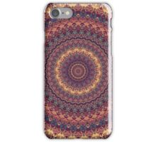 Mandala 147 iPhone Case/Skin