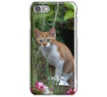 Garden Kitty iPhone Case/Skin