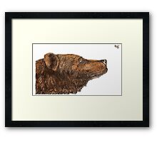 Bear Necessities by Inkspot Framed Print
