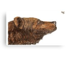 Bear Necessities by Inkspot Canvas Print
