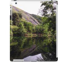 Purple Lupine Hills iPad Case/Skin