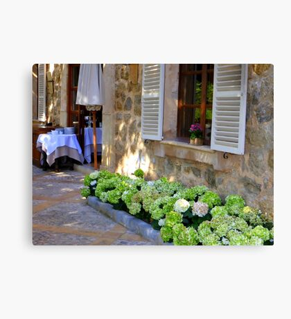 White Shutters And Green Hydrangea Canvas Print
