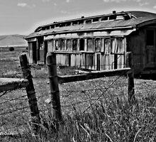 Old Train Car by tvlgoddess