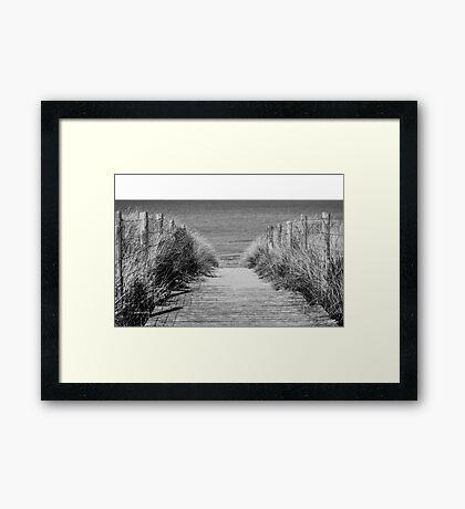 Path to the Beach Framed Print