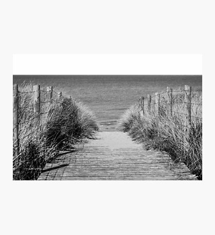 Path to the Beach Photographic Print