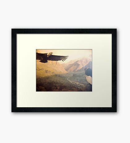 Vultures Framed Print
