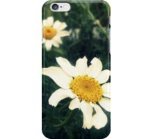 wild daisies on a green field iPhone Case/Skin