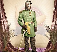 General Simian of the Glorious Banana Republic by PETER GROSS
